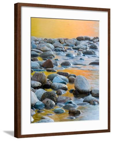 Fall Reflections Among the Cobblestones in the Saco River, White Mountains, New Hampshire, USA-Jerry & Marcy Monkman-Framed Art Print