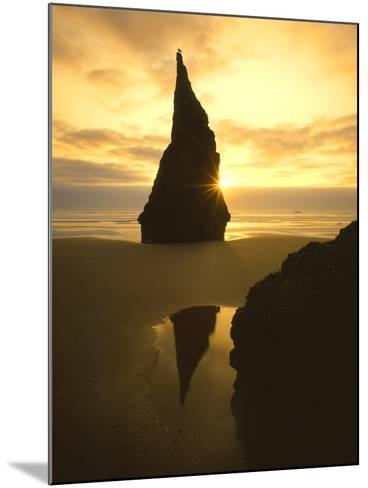 Sunset Silhouettes Seabird Atop Rock Pinnacle, Bandon Beach, Oregon, USA-Steve Terrill-Mounted Photographic Print