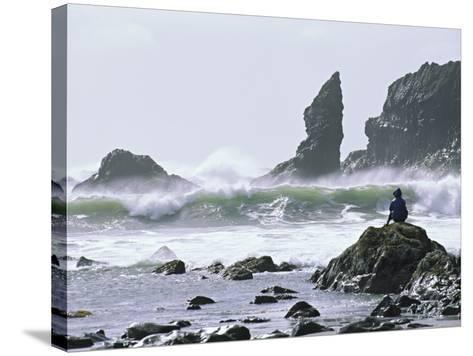 Beach at Lappish, Olympic National Park, Washington, USA-Charles Sleicher-Stretched Canvas Print