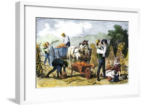Gathering Pumpkins, an October Scene in New England, c.1860--Framed Art Print