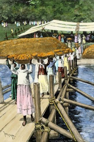 Women Loading Oranges on a Ship at San Antonio, Paraguay, c.1890--Stretched Canvas Print