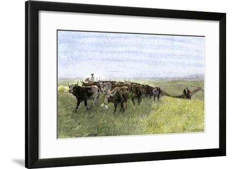 Cowboys Driving a Longhorn Herd on the Great Cattle Trail 1800--Framed Art Print