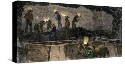 Miners Digging and Loading Coal Into an Underground Mule-Drawn Cart in Pennsylvania, c.1860--Stretched Canvas Print