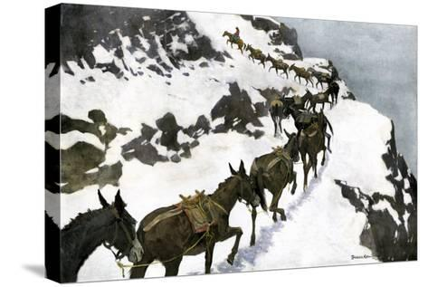 Mule Train Going to the Silver Mines of Colorado--Stretched Canvas Print
