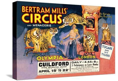 Togare and his Tigers: Bertram Mills' Circus and Menagerie--Stretched Canvas Print
