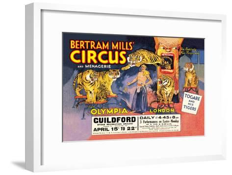 Togare and his Tigers: Bertram Mills' Circus and Menagerie--Framed Art Print