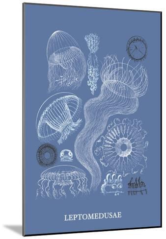 Jellyfish: Leptomedusae-Ernst Haeckel-Mounted Art Print
