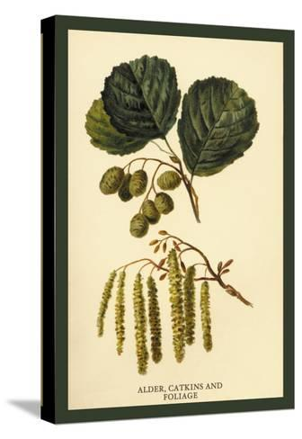 Alder, Catkins and Foliage-W^h^j^ Boot-Stretched Canvas Print