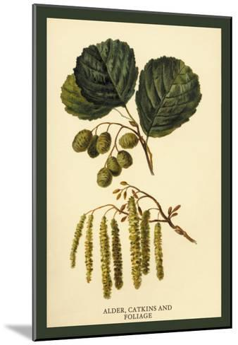 Alder, Catkins and Foliage-W^h^j^ Boot-Mounted Art Print