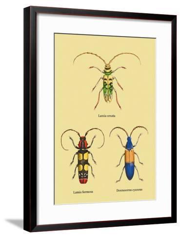 Beetles: Lamia Ornata, L. Formosa and Desmocerus Cyaneus-Sir William Jardine-Framed Art Print