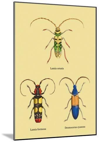 Beetles: Lamia Ornata, L. Formosa and Desmocerus Cyaneus-Sir William Jardine-Mounted Art Print