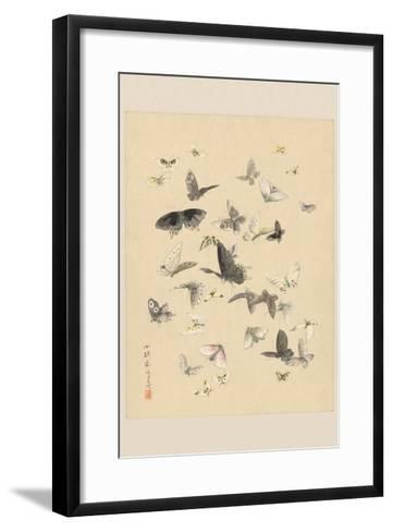 Butterflies--Framed Art Print