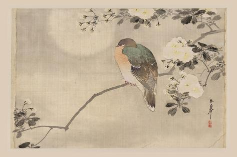 Bird and Cherry Blossoms--Stretched Canvas Print