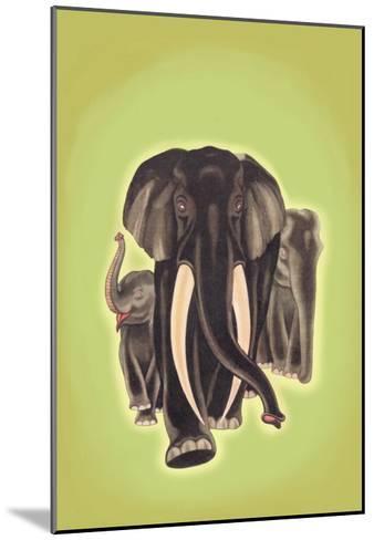 Indian Elephants-Robert Harrer-Mounted Art Print