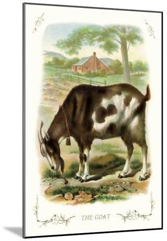 The Goat--Mounted Art Print