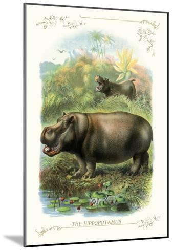 The Hippopotamus--Mounted Art Print