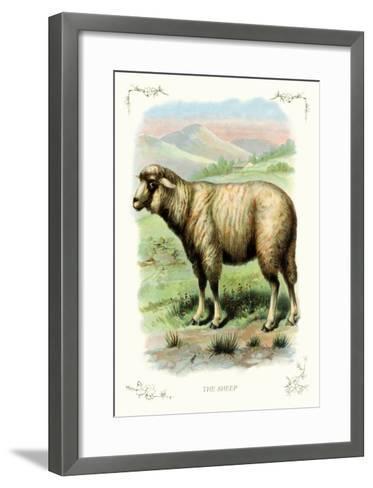 The Sheep--Framed Art Print