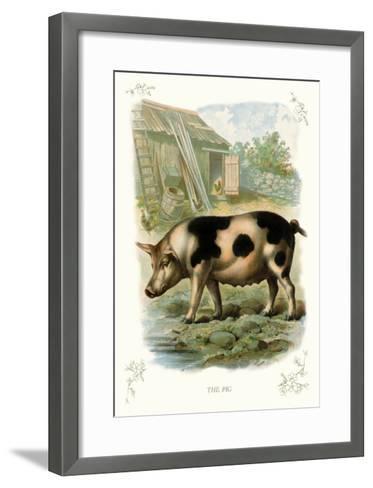 The Pig--Framed Art Print