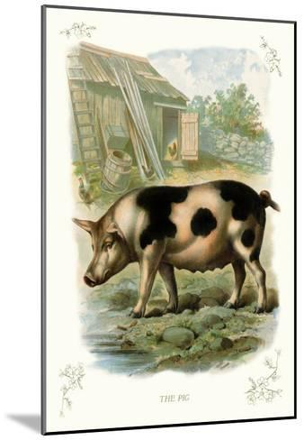 The Pig--Mounted Art Print