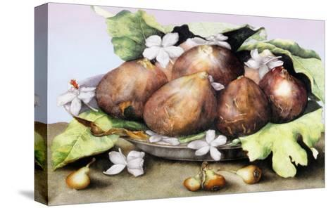 Dish of Figs with Jasmine and Small Pears-Giovanna Garzoni-Stretched Canvas Print