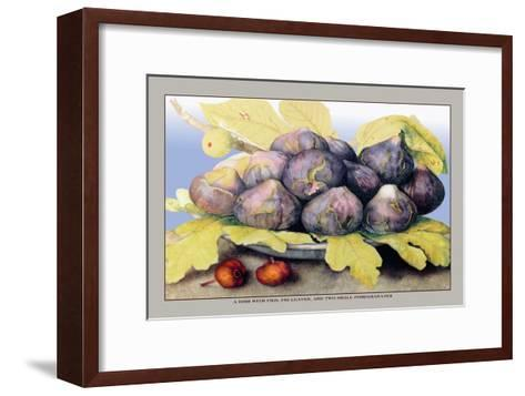 Dish with Figs, Fig Leaves and Small Pomegranates-Giovanna Garzoni-Framed Art Print