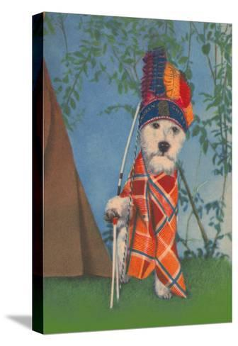 Indian Dog--Stretched Canvas Print