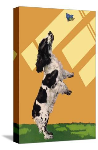 The Cocker Spaniel Sees a Butterfly-Diana Thorne-Stretched Canvas Print