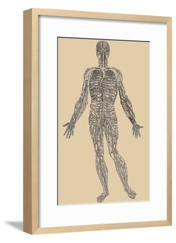 Nervous System-Andreas Vesalius-Framed Art Print