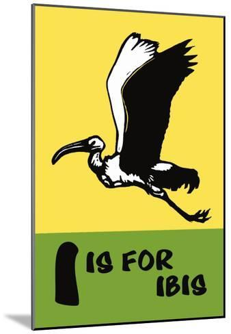 I is for Ibis-Charles Buckles Falls-Mounted Art Print