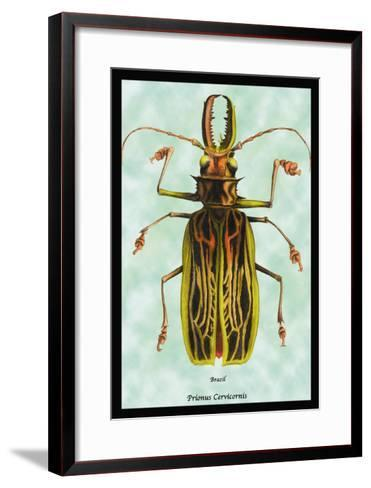 Beetle: Brazilian Prionus Cervicornis-Sir William Jardine-Framed Art Print