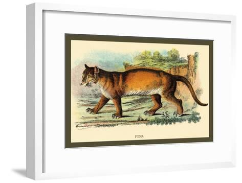 Puma-Sir William Jardine-Framed Art Print