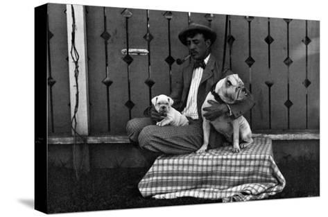 Bulldog, Master, and Pup--Stretched Canvas Print