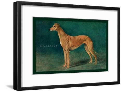 Coursing Greyhound--Framed Art Print