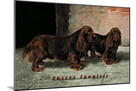 Two Champion Sussex Spaniels--Mounted Art Print