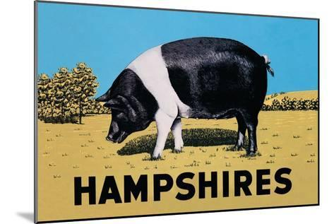 Hampshires--Mounted Art Print