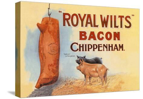 Royal Wilts Bacon--Stretched Canvas Print