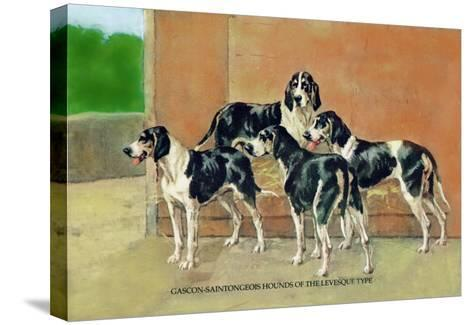 Gascon-Saintongeois Hounds of the Levesque Type-Thomas Ivester Llyod-Stretched Canvas Print