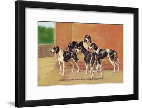 Gascon-Saintongeois Hounds of the Levesque Type-Thomas Ivester Llyod-Framed Art Print