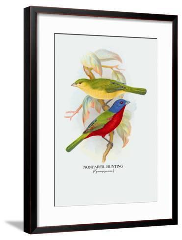 Nonpareil Bunting-Arthur G^ Butler-Framed Art Print