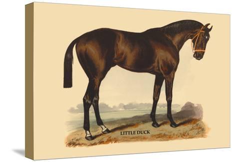 Little Duck-L. Penicaut-Stretched Canvas Print