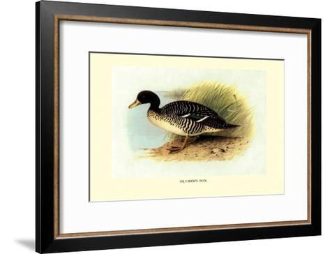 Salvadori's Duck-Henrick Gronvold-Framed Art Print