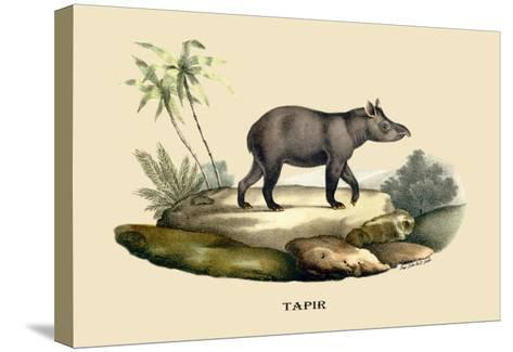 Tapir-E^f^ Noel-Stretched Canvas Print