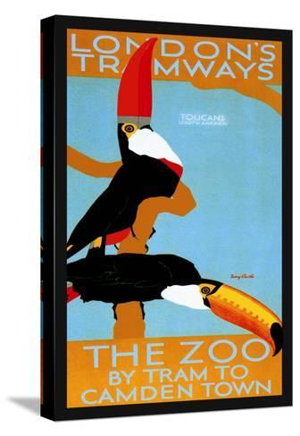 The London Zoo: South American Toucans-Tony Castle-Stretched Canvas Print