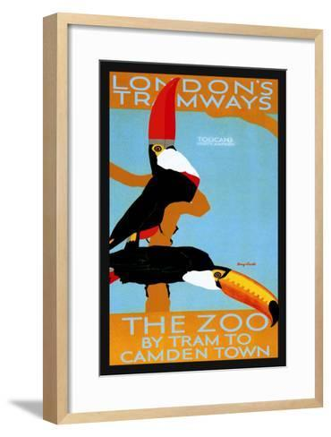 The London Zoo: South American Toucans-Tony Castle-Framed Art Print