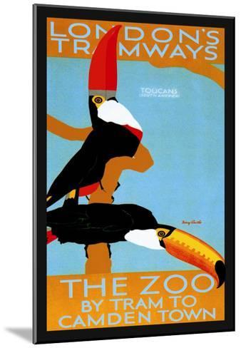 The London Zoo: South American Toucans-Tony Castle-Mounted Art Print