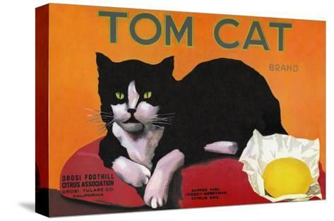 Tom Cat Brand--Stretched Canvas Print