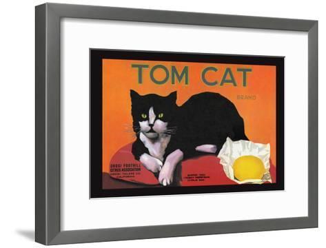 Tom Cat Brand--Framed Art Print