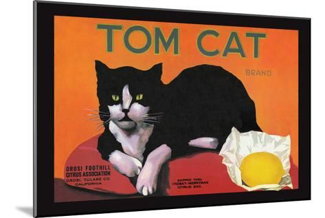 Tom Cat Brand--Mounted Art Print