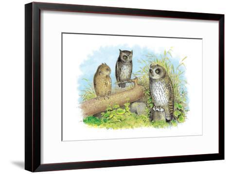 Short-Eared Owl and Screech Owl-Theodore Jasper-Framed Art Print