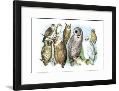 Hoot of Owls-Theodore Jasper-Framed Art Print